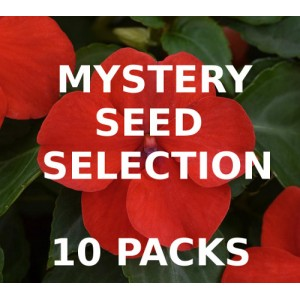 MYSTERY VALUE SELECTION OF 10 PACKS OF SEEDS