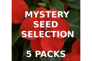 MYSTERY VALUE SELECTION OF 5 PACKS OF SEEDS
