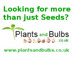 Plants And Bulbs
