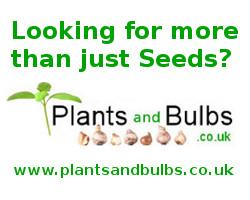 Plants And Bulbs